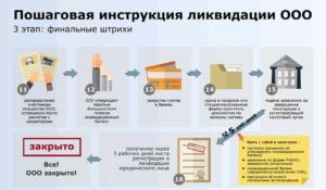 Ликвидация Бюджетного Учреждения Пошаговая Инструкция В 2020 Году