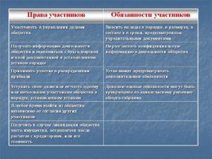 Участие учредителей в повседневной деятельности ооо в его управление