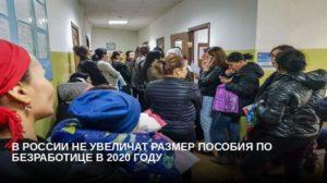 Пособие По Безработице В 2020 В Белгородской Области
