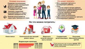 Губернаторская помощь 100 тысяч рублей на что можно потратить