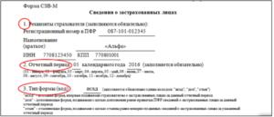 Образец Платежки Штраф В Пфр За Сзвм В 2020 Году Реквизиты Москва