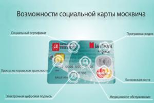 Социальная карта москвича для беременных что дает