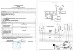 Может ли кадастровый инженер изготовить технический паспорт
