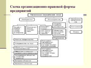 Где узнать наименование организационно правовой формы